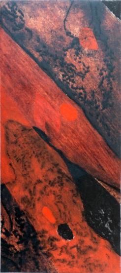 eucalyptus 5 copie